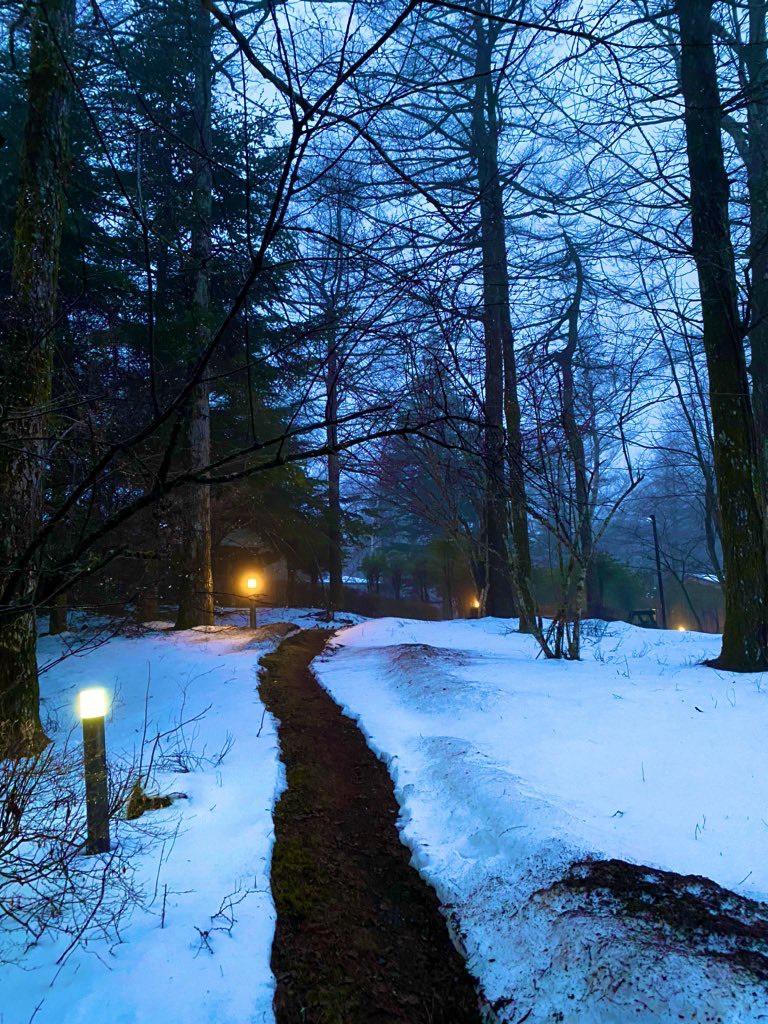 山で × 雪と × 鹿と